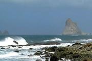 Новая морская экскурсия создана на Тенерифе. // libertaddigital.com