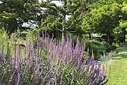 Сад расположен в Венсенском лесу. // paris.fr