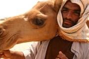 Посетить страны Персидского залива будет проще. // flickr.com
