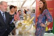 Выставка даст возможность продегустировать напитки. // dipusevilla.es