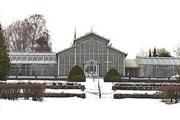 Зимний сад работает с 1 октября 1893 года. // helsinki.ru