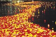 Плывущие по реке фонари – незабываемое зрелище. // visitkorea.or.kr