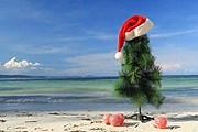 Новогодние каникулы за рубежом запланировали лишь 3% наших туристов. // Shutterstock