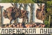 """Самая высокая елка растет в """"Беловежской пуще"""". // stranamam.ru"""