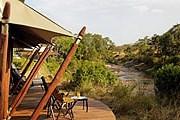 Тентовые домики установлены на берегу реки. // elewanacollection.com