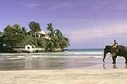 Шри-Ланка ждет российских туристов. // blacktomato.com