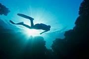 Подводные пещеры обнаружены в Доминикане. // GettyImages