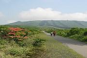 Осима - один из красивейших японских островов. // article.wn.com
