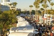 Фестиваль проходит в живописном пригороде Майами. // examiner.com