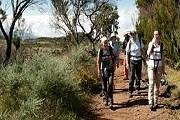 Килиманджаро можно покорить и небольшой группой. // qadventures.com