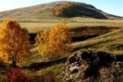 Хакасский заповедник создан в 1999 году. // moikompas.ru