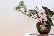 Искусство икебаны может быть азартным. // tokyoweekender.com