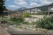 Альпийская зона - крупнейшая в ботаническом саду. // tripadvisor.com