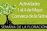 Фестиваль проходит с 1 по 4 мая. // lacomarcadelasidra.com