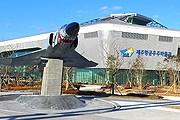 Музей вчера принял первых посетителей. // visitkorea.or.kr
