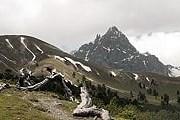 Пока в Швейцарии только один национальный парк. // Swiss National Park