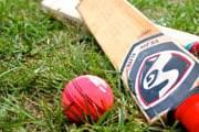 Крикет привлечет туристов в Австралию и Новую Зеландию. // voicesofny.org