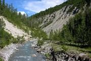В национальном парке Швейцарии. // wikimedia.org