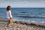 Большинство детей находят за 15 минут.  // risteski goce, Shutterstock.com