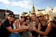 Фестиваль проходит в городе Мельник.  // Mělnické vinobraní