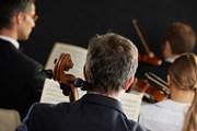 Оркестр исполнит мировую классику.  // Stokkete, Shutterstock.com