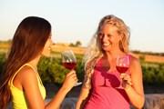 Чехия ждет любителей вина. // Maridav, Shutterstock.com