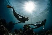 В числе опасных видов отдыха - дайвинг.  // Dudarev Mikhail, Shutterstock.com