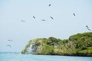 Острова Росарио - уникальный национальный заповедник.  // christian kober , Shutterstock.com