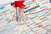 Калининград привлекает туристов.  // Bartosz Zakrzewski, Shutterstock.com