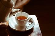 Туристы узнают о чайных традициях.  // Wiro.Klyngz, Shutterstock.com