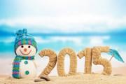 С наступающим 2015 годом! // Laboko