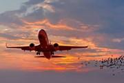 Авиатарифы снижаются - билеты дешевеют.