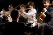 Множество музыкальных событий пройдет в Таллине.  // Stokkete, Shutterstock.com