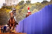 Рыцари приедут со своими конями.  // ratobor.com