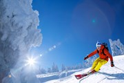 На лыжных курортах Сочи достаточно снега.  // Samot, Shutterstock.com