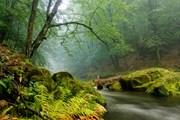 Парк предложит водную прогулку.  // PetrJanJuracka, Shutterstock.com
