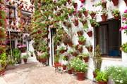 Частные дворики приглашают туристов.  // Taiga, Shutterstock.com
