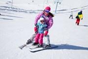 Лыжники приезжают семьями.