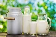 Молочная продукция - гордость Алтайского края.  // Valentyn Volkov, Shutterstock.com