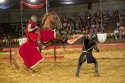 В Сукко можно увидеть настоящие рыцарские бои. // Конно-трюковой театр «Парк Экстрим»