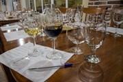 Туристов учат правильно пить вино. // Travel.ru