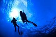 Создается новое развлечение для дайверов - подводный парк в Крыму. // Soren Egeberg Photography, shutterstock