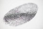 При введении новой информационной системы возможны технические неполадки. // Derek Hatfield, shutterstock.com