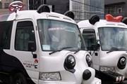 Автобусы в виде панд возят туристов бесплатно. // pandabus.net