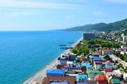 Сочи - самый популярный курорт в бархатный сезон. // Martynova Anna, shutterstock