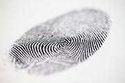 Сдача биометрии стала обязательной. // Derek Hatfield, shutterstock