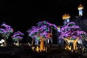 Светящийся сад обошелся Дубаю в 8 миллионов долларов США.