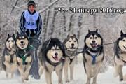 Соревнования являются этапом Кубка мира. // gonka-sampo.ru/