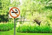 Курящим туристам придется в Туркмении нелегко. // Treenoot, shutterstock