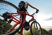 Туристы на велосипедах смогут осмотреть всю провинцию Мадрид. // Dudarev Mikhail, shutterstock.com
